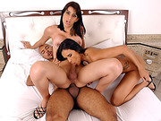 Shemale Rides Hard Dick And Have Bareback