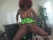 busty black shemale and her massive big cock