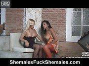 Lorena&Thais irresistible trannies on video