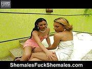 Mylena&Kalena hot shemales in action
