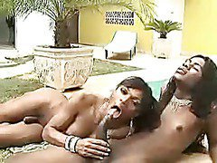 two black shemales enjoy oral action by the pool
