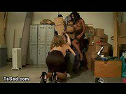 Threesome bdsm action with two trannies in store room