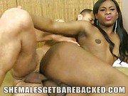 Big Cock TS Perla Lohan Barebacked