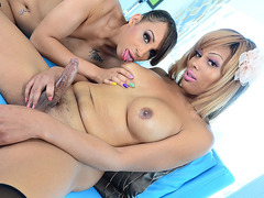 Ebony Shemale Beauties Please Each Other