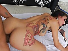 Tattooed shemale Brenda Lohan gets her juicy ass fucked