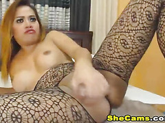 Busty Tranny Plays with her Tight Butthole
