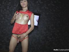 Beautiful ladyboy oily handjobs and bareback anal boning