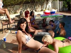 Slutty shemale hotties enjoys sucking and fucking in an intense pool orgy