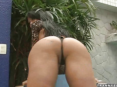 Foxy brazilian shemale babe rubbing on her cock