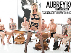 Glamorous TS Aubrey Kate gangbanged by 6 guys