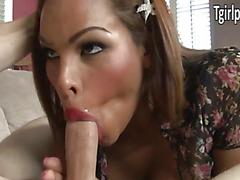 Tranny Jenna Belle picked up and fucked