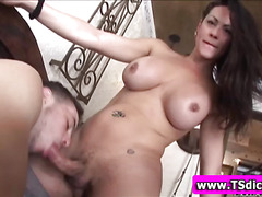 Tranny sucked rimmed and rammed