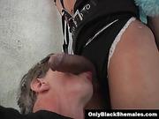 Sasha Strokes gets her big cock worshiped