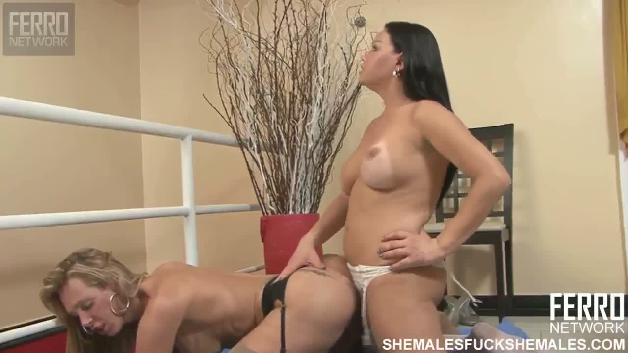3 Shemales Having Sex sexual shemales in hot oral n oral sex 3