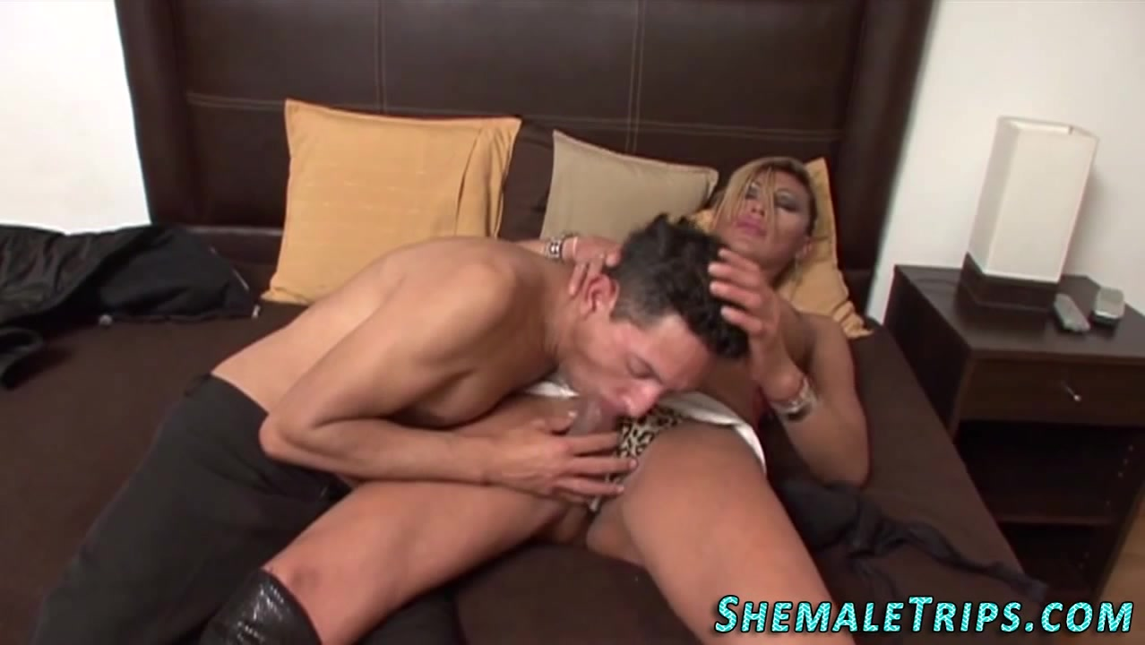 Guy Gives Shemale Blowjob