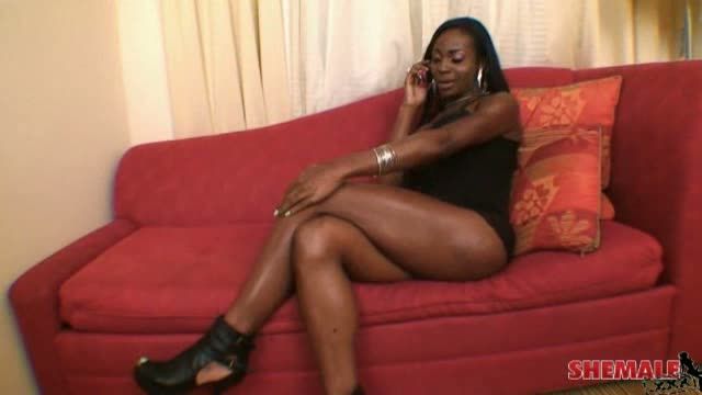 beautiful black tranny porn